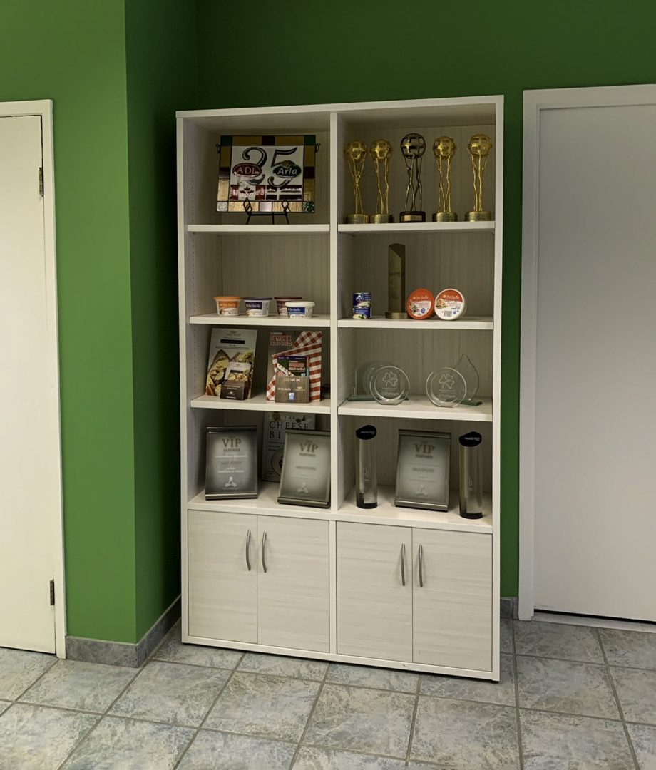 Cabinet with shelfs and doors in the hallway