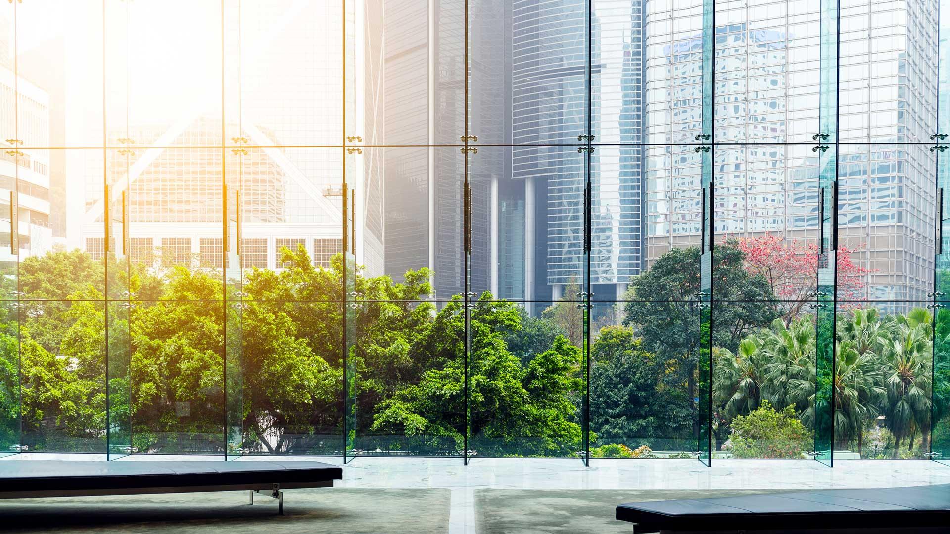 Greenery between the office buildings