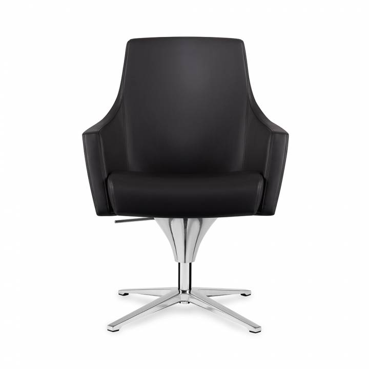 Ayles Lounge Chair
